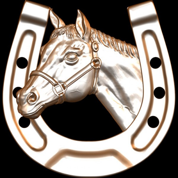 Horseshoe Horse Head