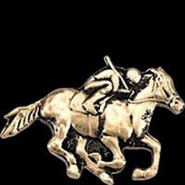 Racehorse -1